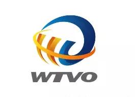 WTVO学校LOGO设计
