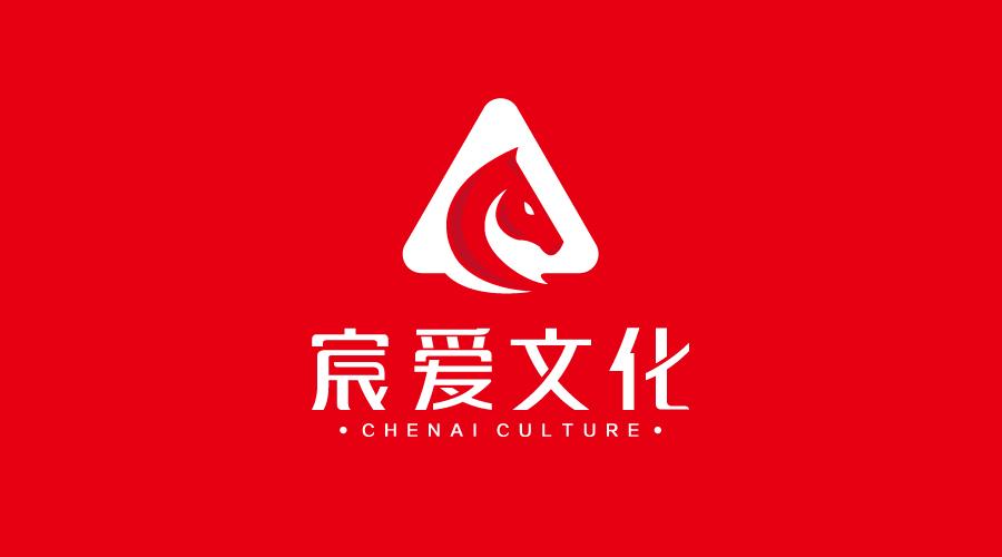 上海宸爱文化传播公司标志设计